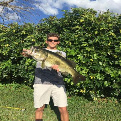Giant 8.24 pound large mouth bass