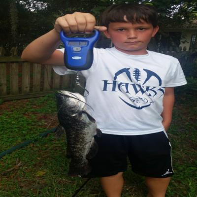 Xavier's catfish Catch